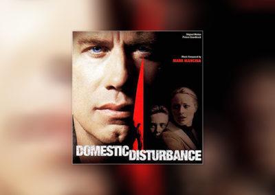 Domestic Disturbance