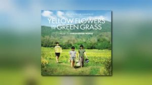 Yellow Flowers on the Green Grass